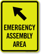 Emergency Assembly Area Upper Left Arrow Sign