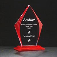 Fire-n-Ice Flame Award
