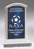 Marbleized Acrylic Award