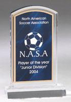 Marbleized Acrylic Award