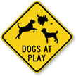 Dogs At Plays Caution Sign