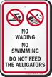 No Wading, Swimming or Feeding Alligators Sign