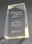 Facet Wedge Acrylic Award