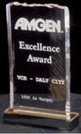 Ice Top Acrylic Award