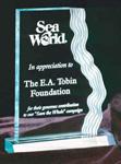 Waterfall Edge Acrylic Award