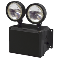 TFX Wet Location Rated Two-Head Emergency LED Light